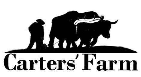 A Family Farm in Minnesota's Heartland